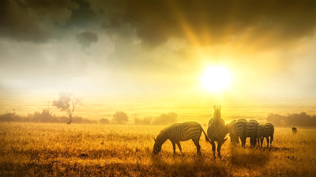Afrique couché soleil